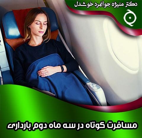 مسافرت کوتاه در سه ماه دوم بارداری